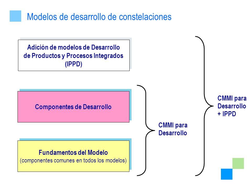 Modelos de desarrollo de constelaciones