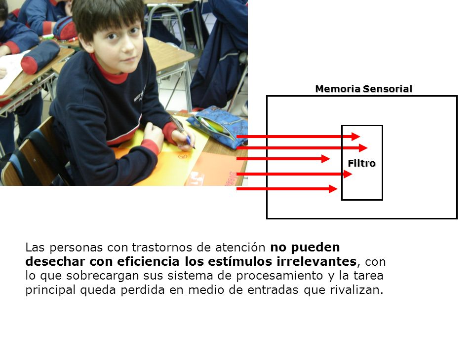Memoria Sensorial Filtro.