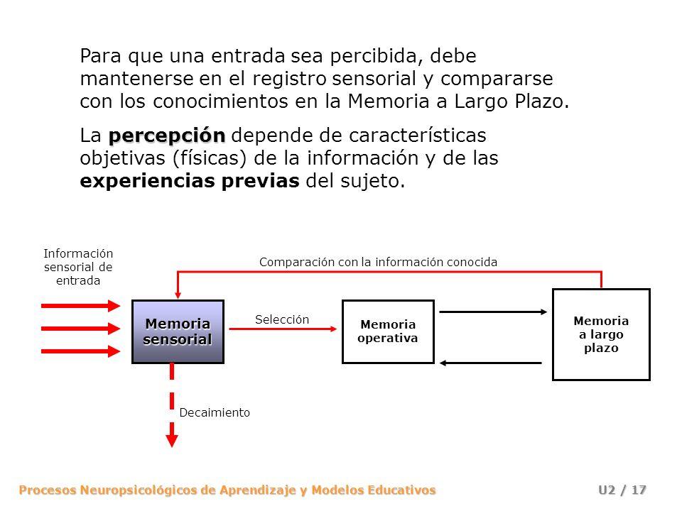 Para que una entrada sea percibida, debe mantenerse en el registro sensorial y compararse con los conocimientos en la Memoria a Largo Plazo.