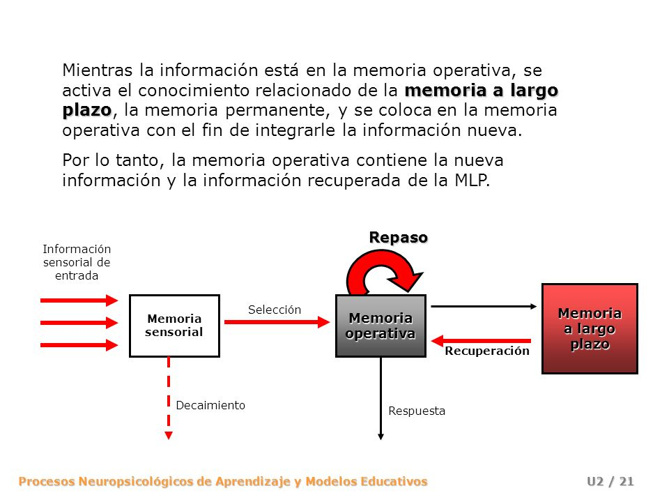 Información sensorial de entrada