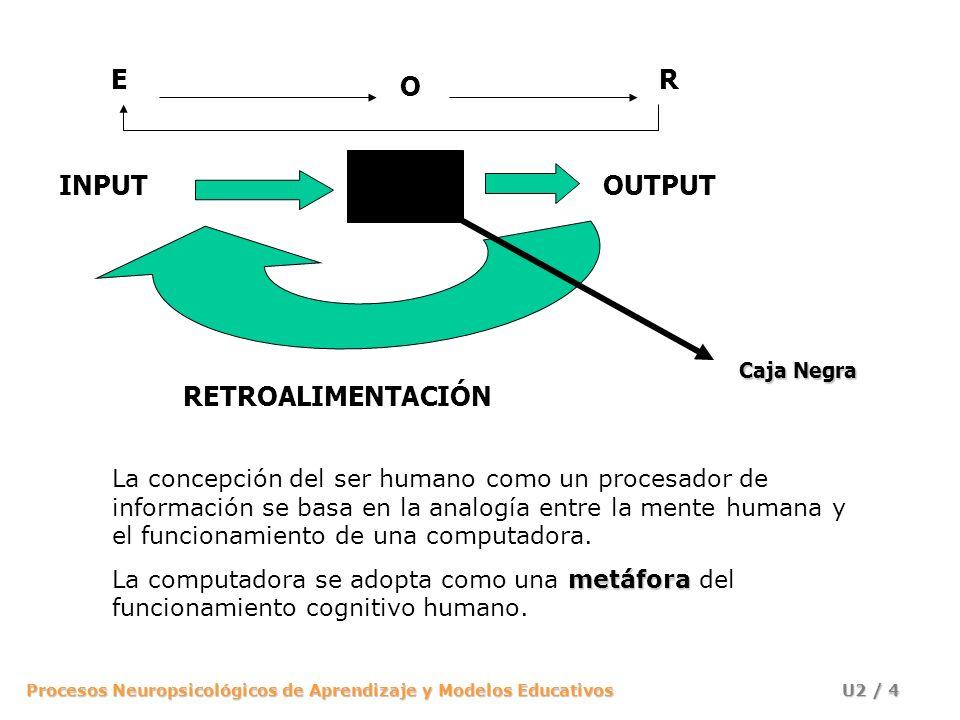 INPUT OUTPUT RETROALIMENTACIÓN E O R