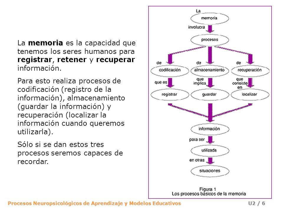 La memoria es la capacidad que tenemos los seres humanos para registrar, retener y recuperar información.