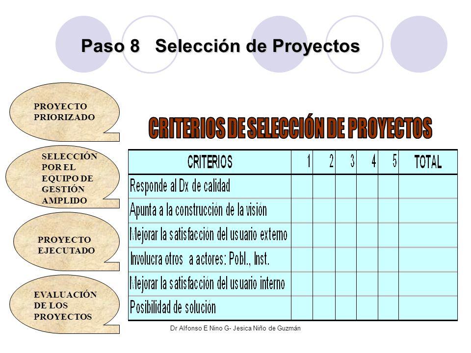 Paso 8 Selección de Proyectos