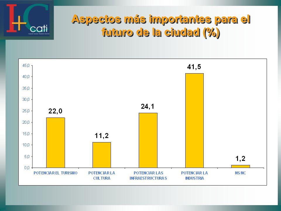 Aspectos más importantes para el futuro de la ciudad (%)