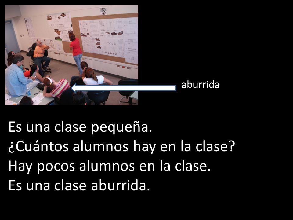 ¿Cuántos alumnos hay en la clase Hay pocos alumnos en la clase.