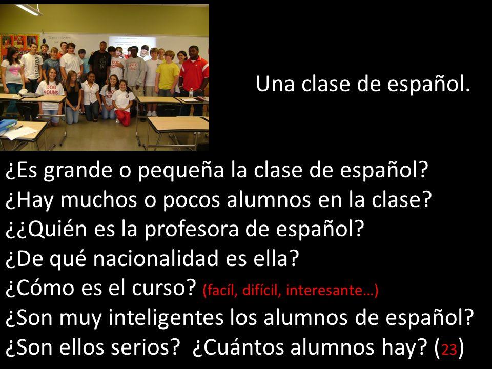 Una clase de español. ¿Es grande o pequeña la clase de español ¿Hay muchos o pocos alumnos en la clase