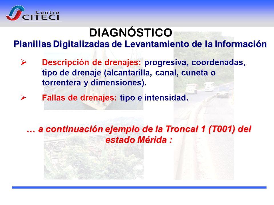 DIAGNÓSTICO Planillas Digitalizadas de Levantamiento de la Información