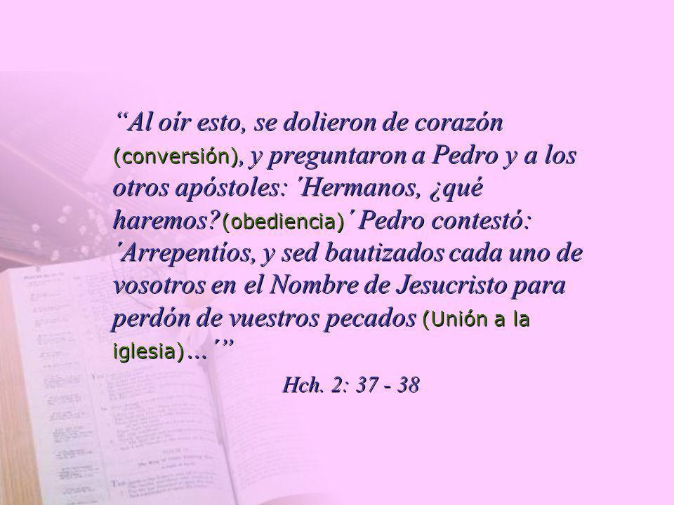 Al oír esto, se dolieron de corazón (conversión), y preguntaron a Pedro y a los otros apóstoles: ´Hermanos, ¿qué haremos (obediencia)´ Pedro contestó: ´Arrepentíos, y sed bautizados cada uno de vosotros en el Nombre de Jesucristo para perdón de vuestros pecados (Unión a la iglesia)…´