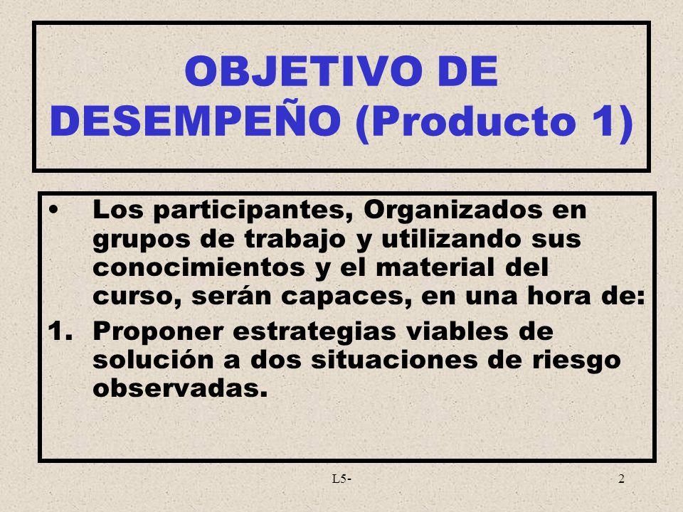 OBJETIVO DE DESEMPEÑO (Producto 1)