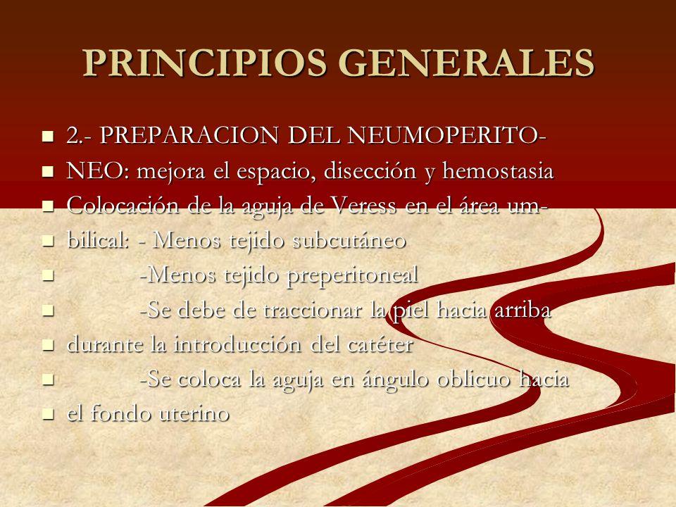 PRINCIPIOS GENERALES 2.- PREPARACION DEL NEUMOPERITO-
