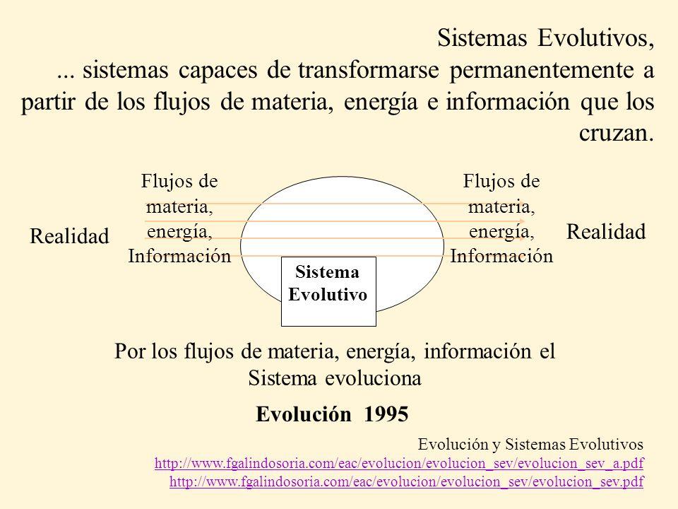 Sistemas Evolutivos,... sistemas capaces de transformarse permanentemente a partir de los flujos de materia, energía e información que los cruzan.