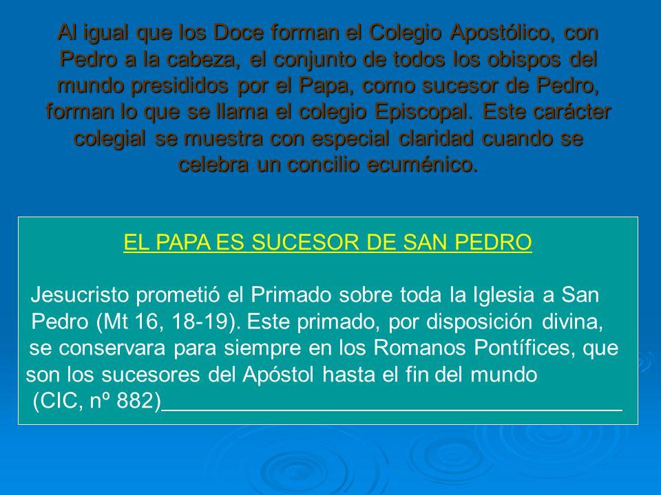 EL PAPA ES SUCESOR DE SAN PEDRO