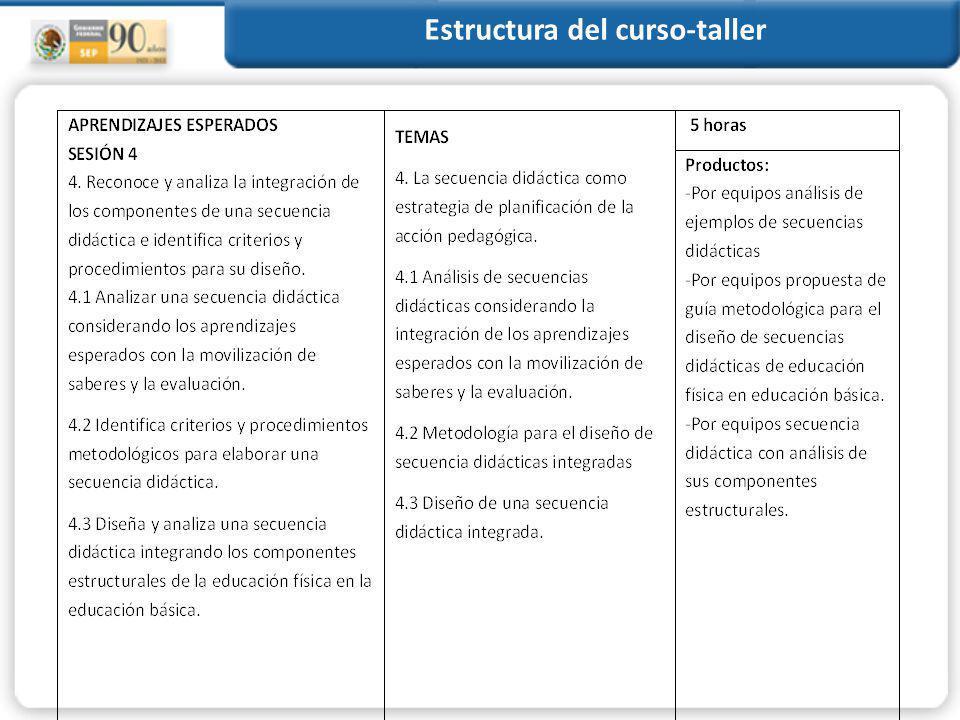 Estructura del curso-taller