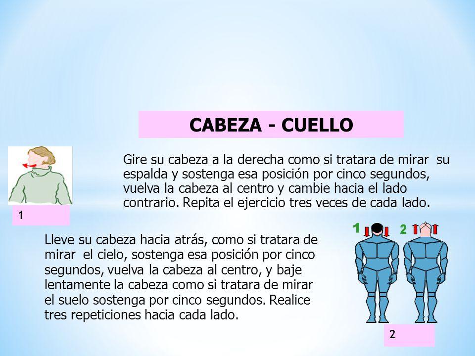 CABEZA - CUELLO