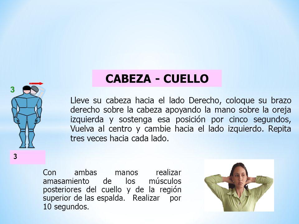 CABEZA - CUELLO 3.