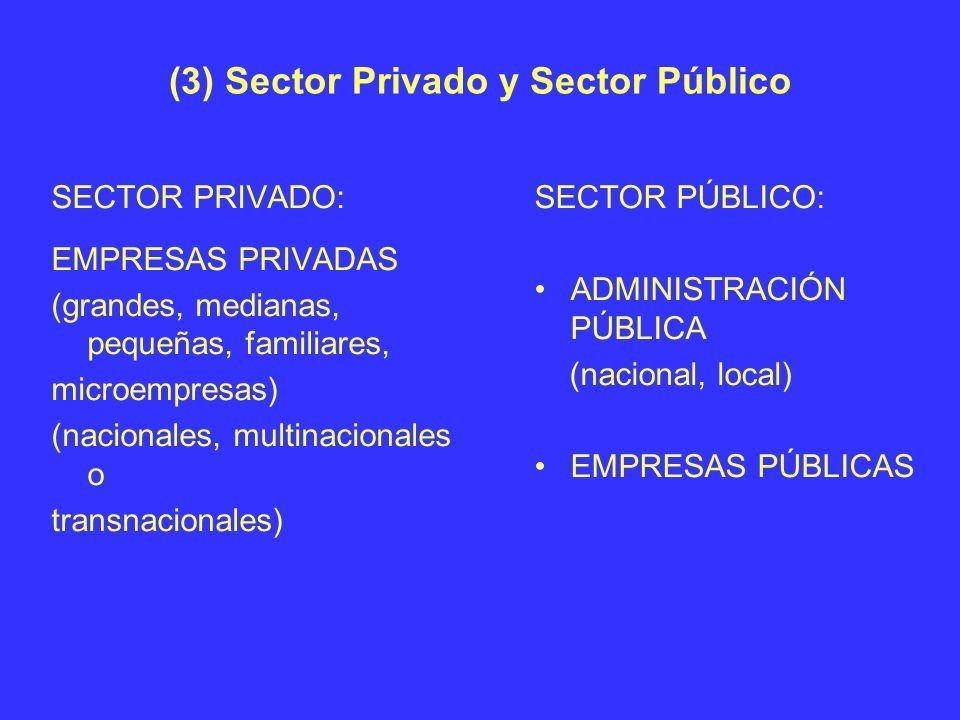 (3) Sector Privado y Sector Público