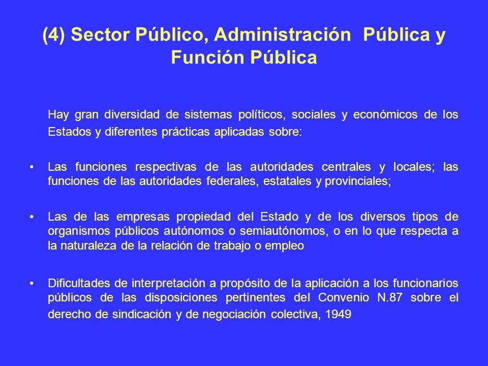 (4) Sector Público, Administración Pública y Función Pública