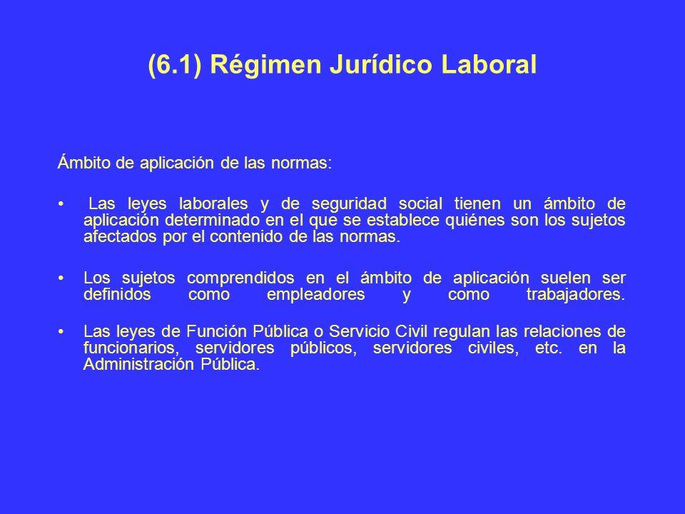 (6.1) Régimen Jurídico Laboral