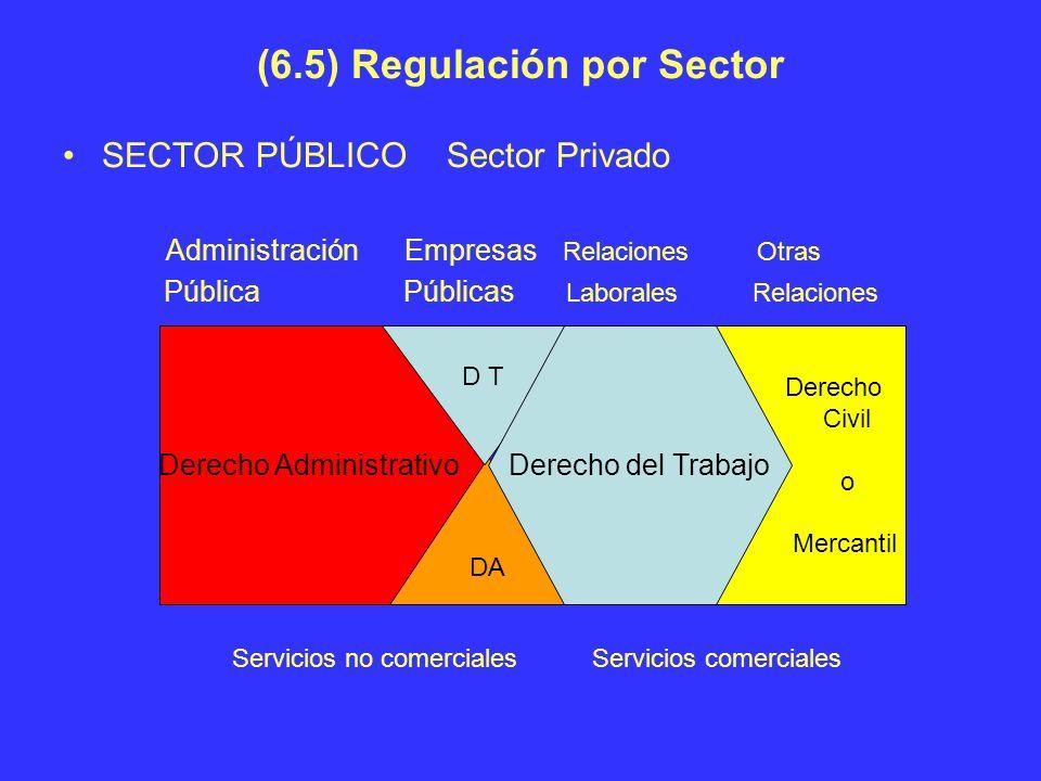 (6.5) Regulación por Sector