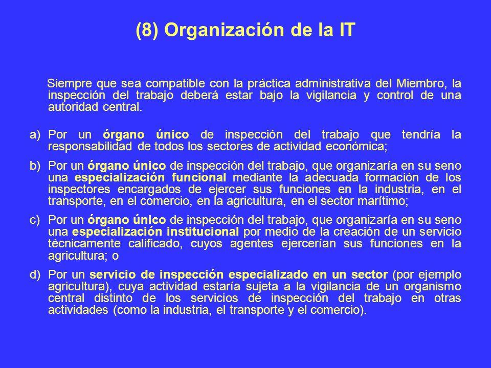 (8) Organización de la IT