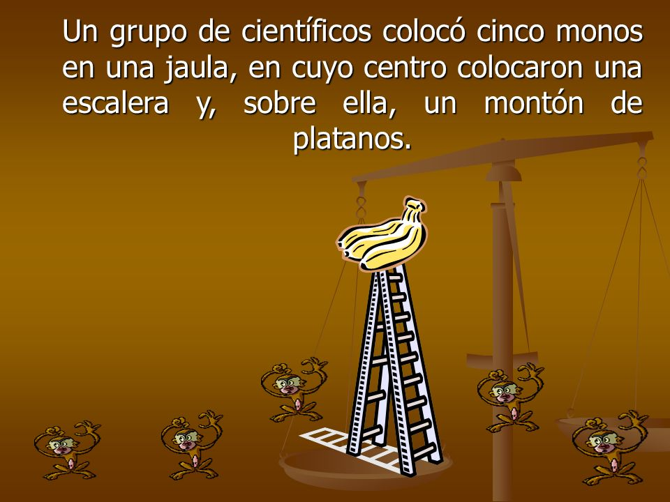 Un grupo de científicos colocó cinco monos en una jaula, en cuyo centro colocaron una escalera y, sobre ella, un montón de platanos.