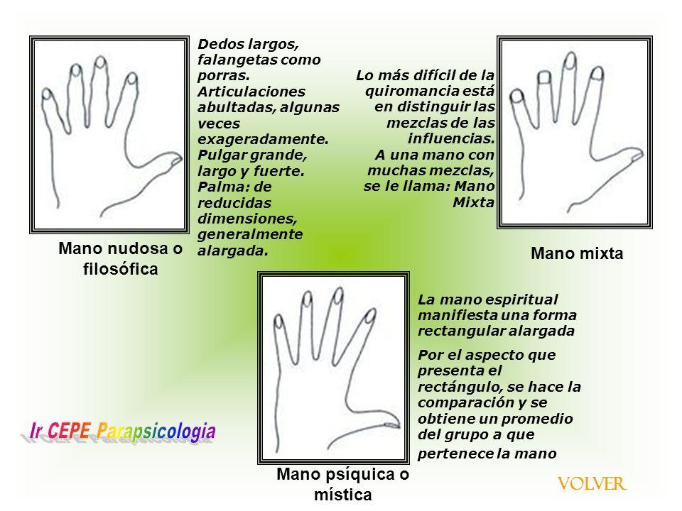 Asombroso Formas De Uñas De Los Dedos Largos Regalo - Ideas Para ...