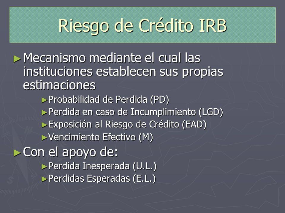 Riesgo de Crédito IRB Mecanismo mediante el cual las instituciones establecen sus propias estimaciones.