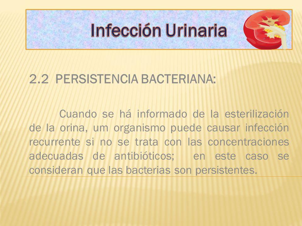 Infección Urinaria 2.2 PERSISTENCIA BACTERIANA: