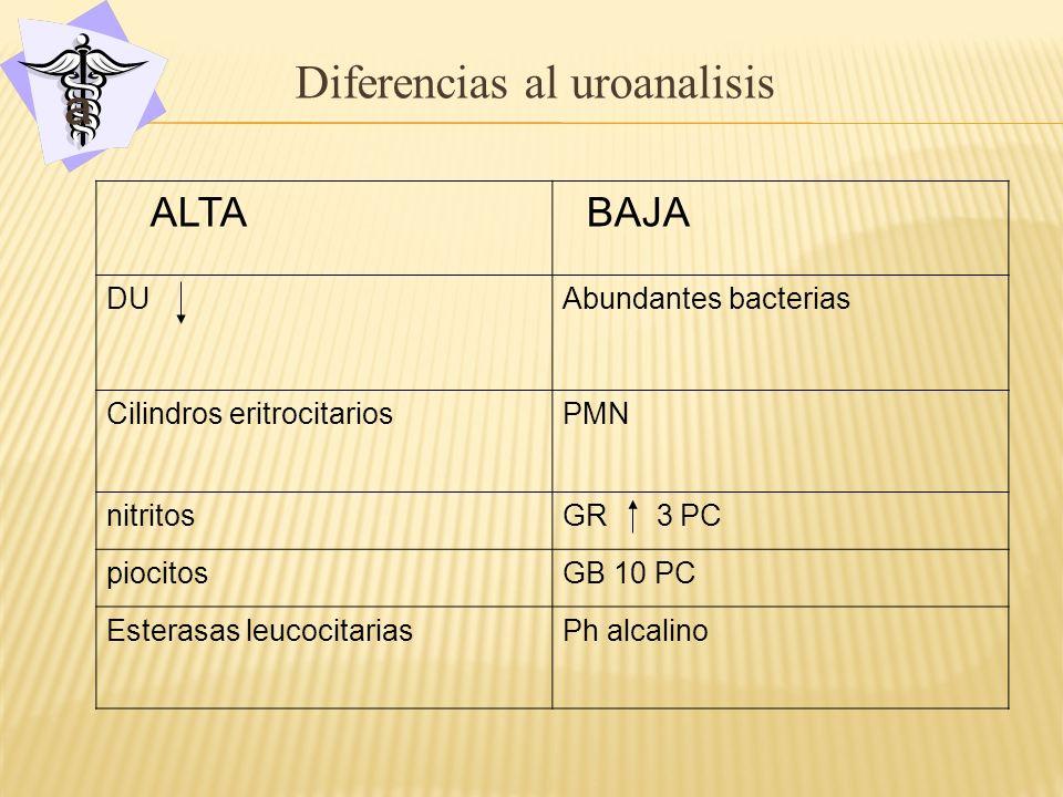 a Diferencias al uroanalisis ALTA BAJA DU Abundantes bacterias