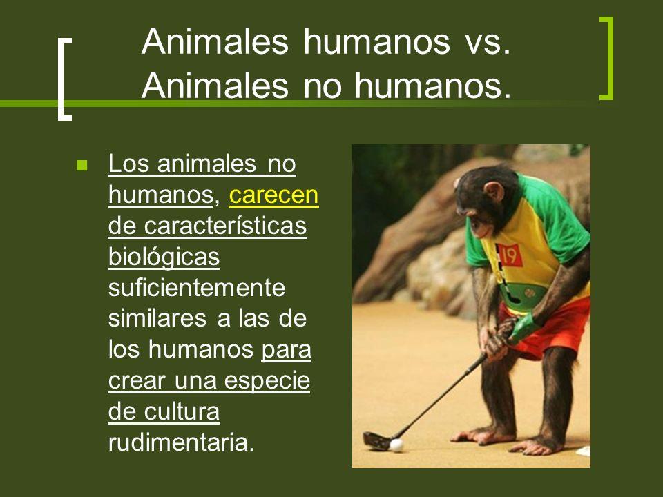 Animales humanos vs. Animales no humanos.