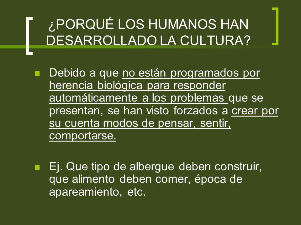 ¿PORQUÉ LOS HUMANOS HAN DESARROLLADO LA CULTURA
