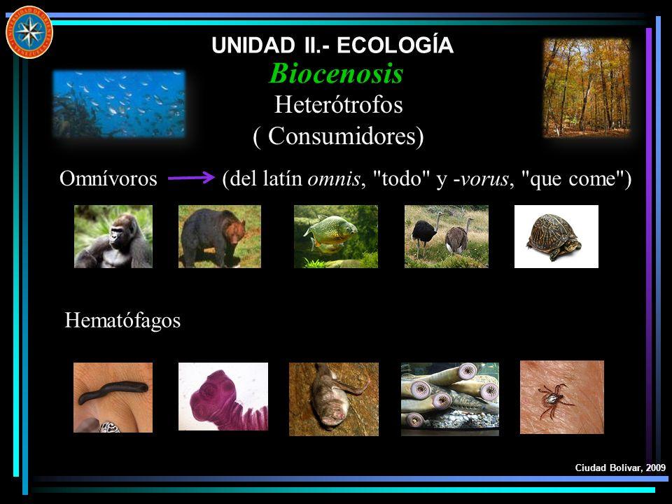 Biocenosis Heterótrofos ( Consumidores) UNIDAD II.- ECOLOGÍA Omnívoros