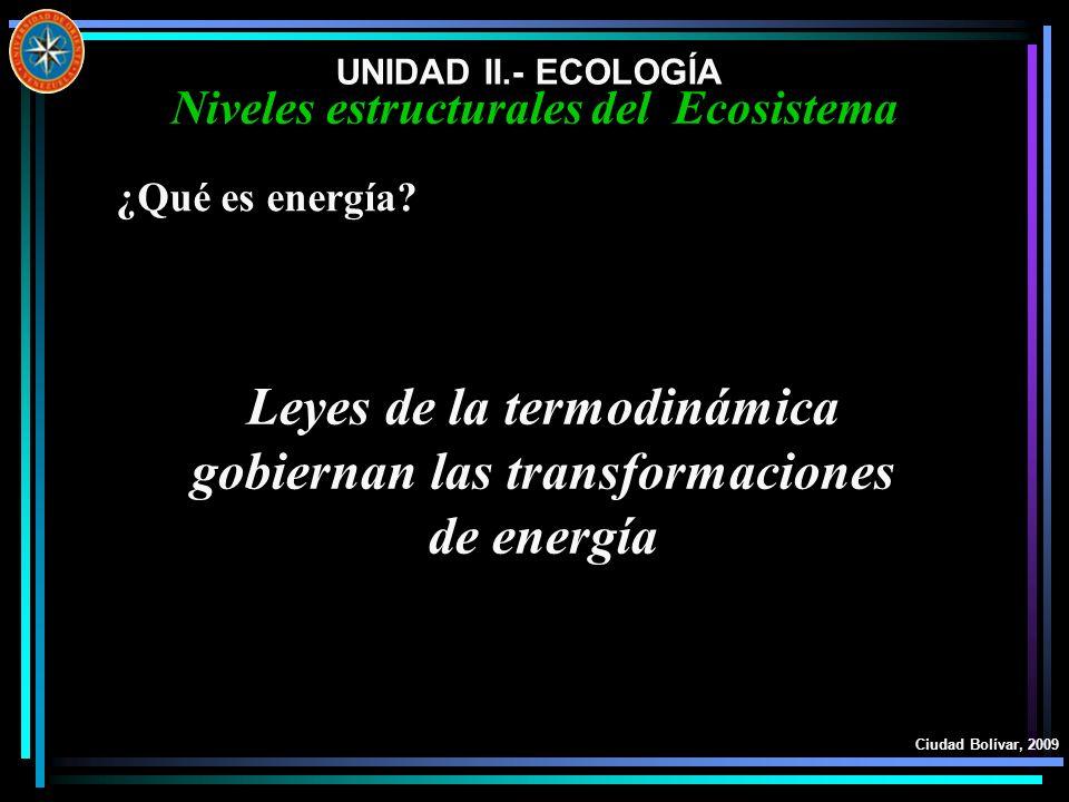 Leyes de la termodinámica gobiernan las transformaciones de energía