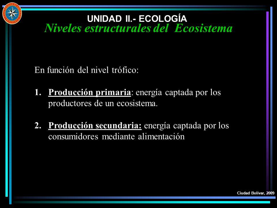 Niveles estructurales del Ecosistema