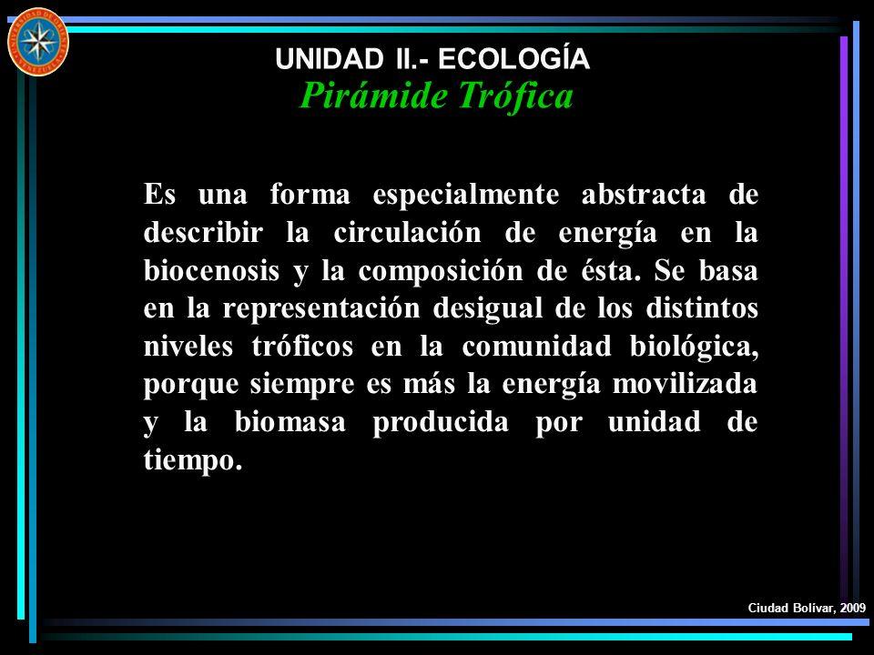 UNIDAD II.- ECOLOGÍAPirámide Trófica.