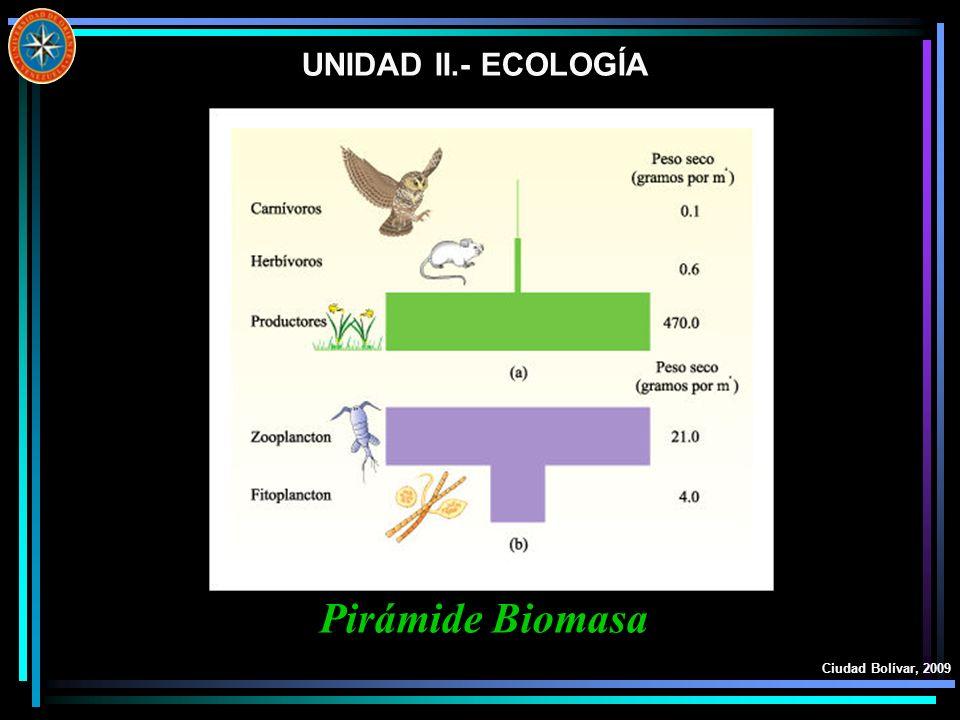 UNIDAD II.- ECOLOGÍA Pirámide Biomasa Ciudad Bolívar, 2009