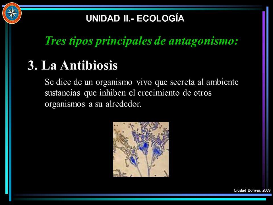 Tres tipos principales de antagonismo: