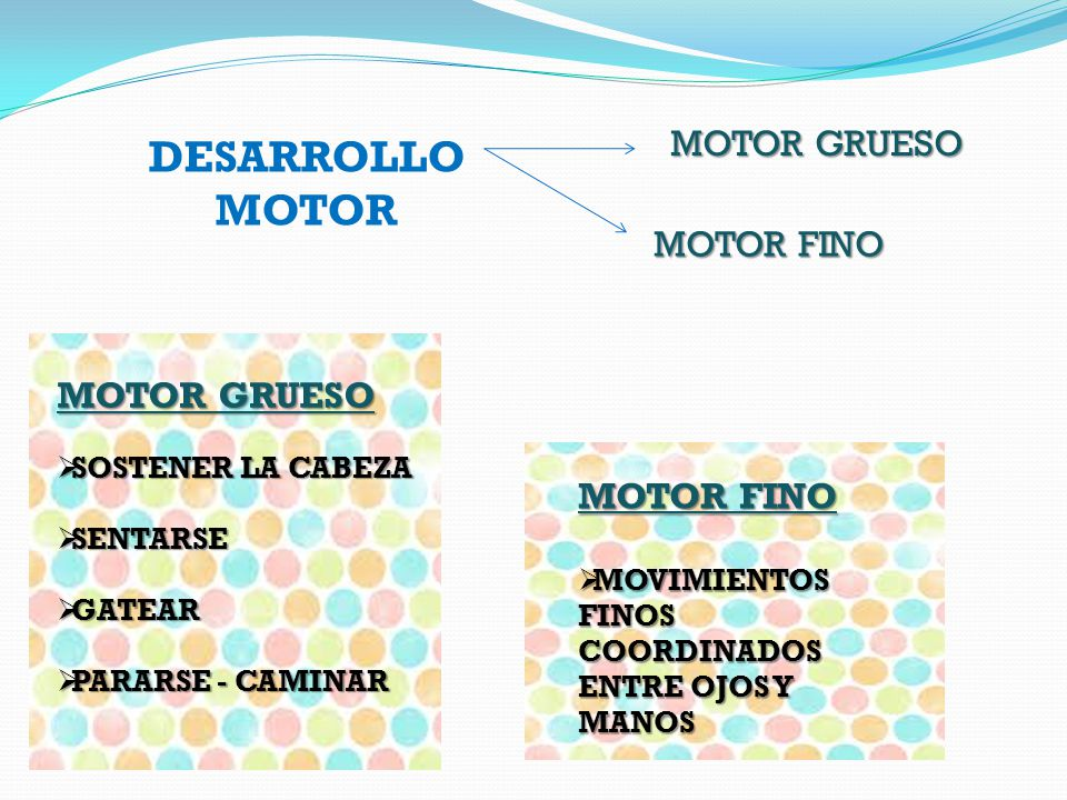 DESARROLLO MOTOR MOTOR GRUESO MOTOR FINO MOTOR GRUESO MOTOR FINO