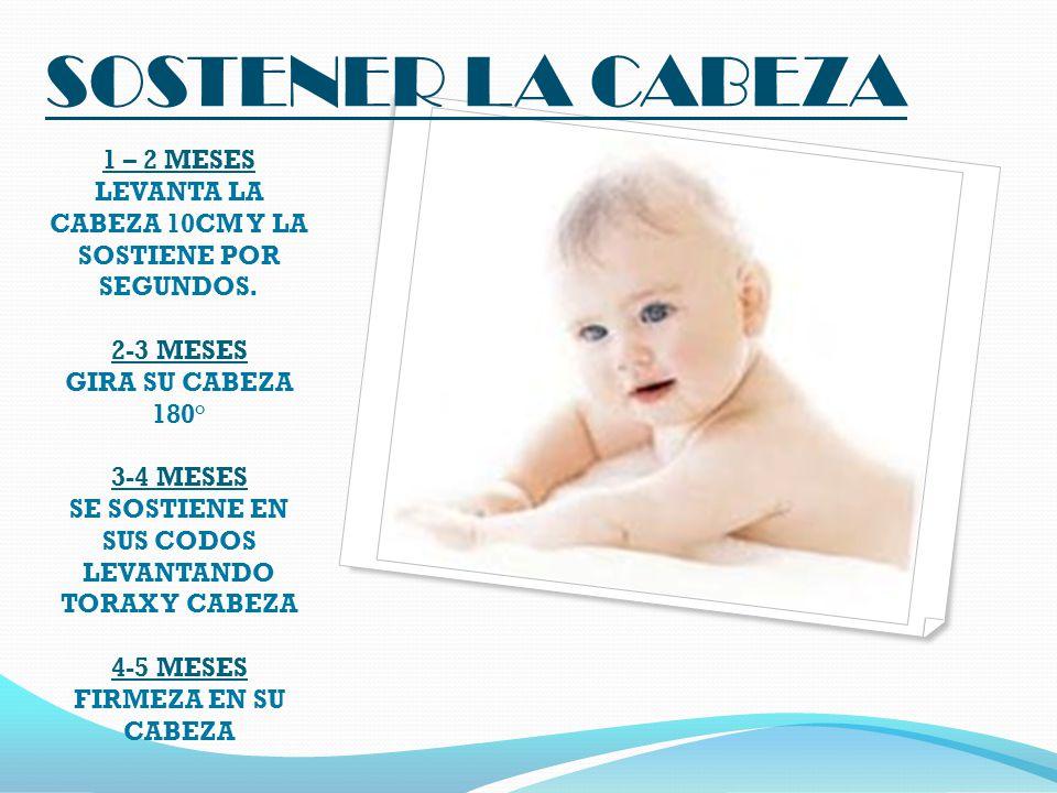 SOSTENER LA CABEZA 1 – 2 MESES