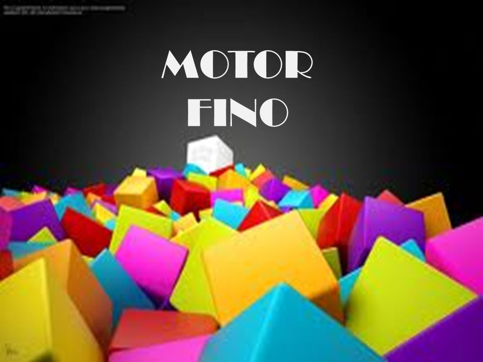 MOTOR FINO