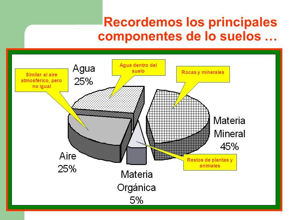 Composicion de los suelos ppt video online descargar for Componentes quimicos del suelo