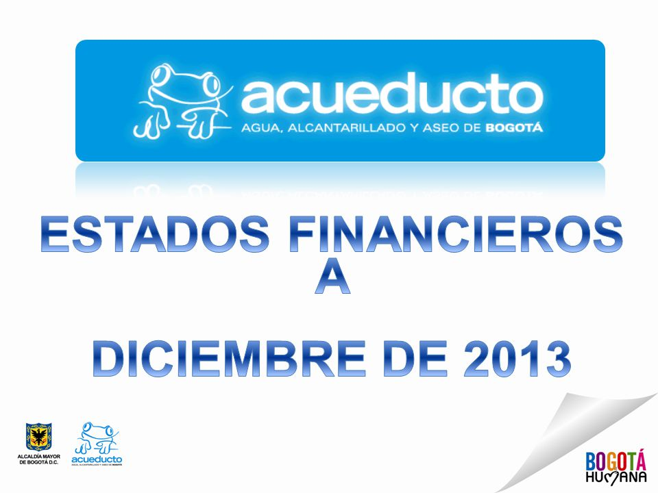 ESTADOS FINANCIEROS A DICIEMBRE DE 2013
