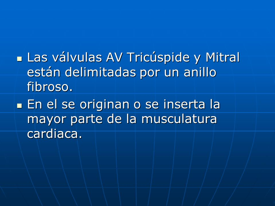 Las válvulas AV Tricúspide y Mitral están delimitadas por un anillo fibroso.