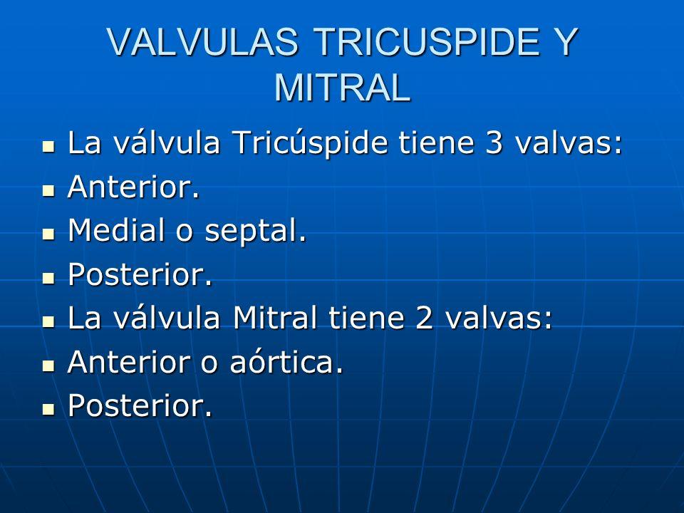 VALVULAS TRICUSPIDE Y MITRAL