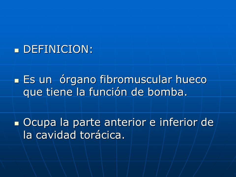DEFINICION: Es un órgano fibromuscular hueco que tiene la función de bomba.