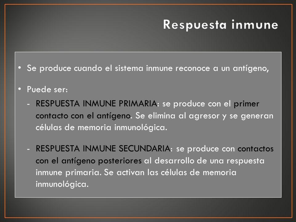 Respuesta inmune Se produce cuando el sistema inmune reconoce a un antígeno, Puede ser:
