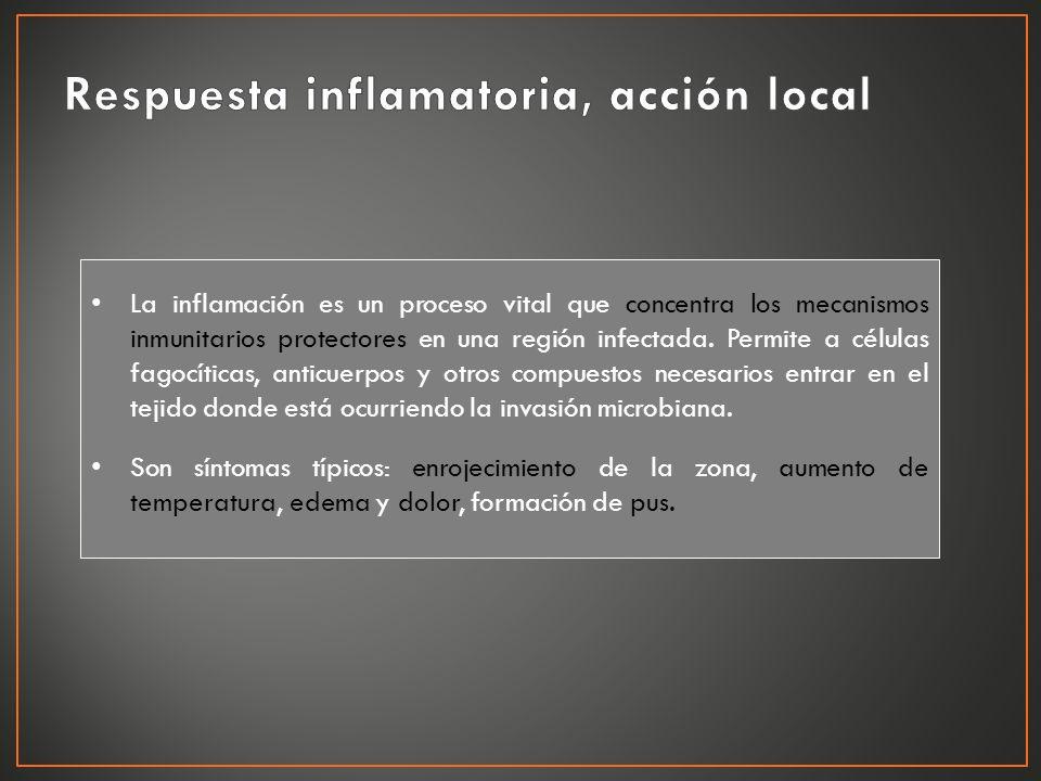 Respuesta inflamatoria, acción local