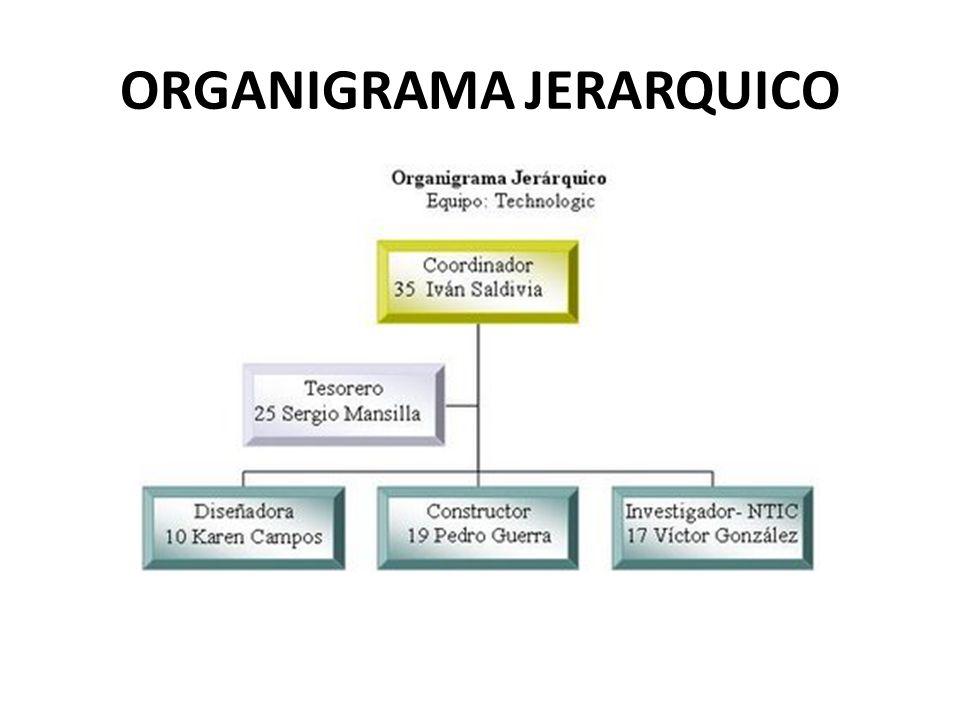 ORGANIGRAMA JERARQUICO