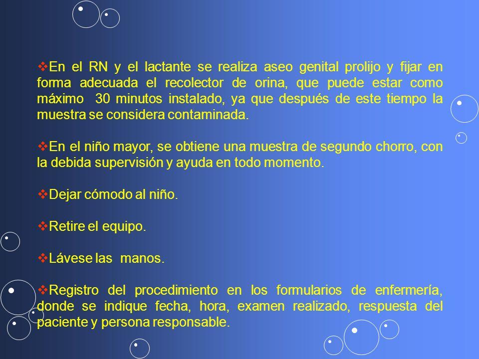 En el RN y el lactante se realiza aseo genital prolijo y fijar en forma adecuada el recolector de orina, que puede estar como máximo 30 minutos instalado, ya que después de este tiempo la muestra se considera contaminada.