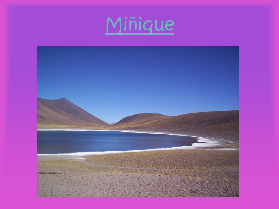 Miñique